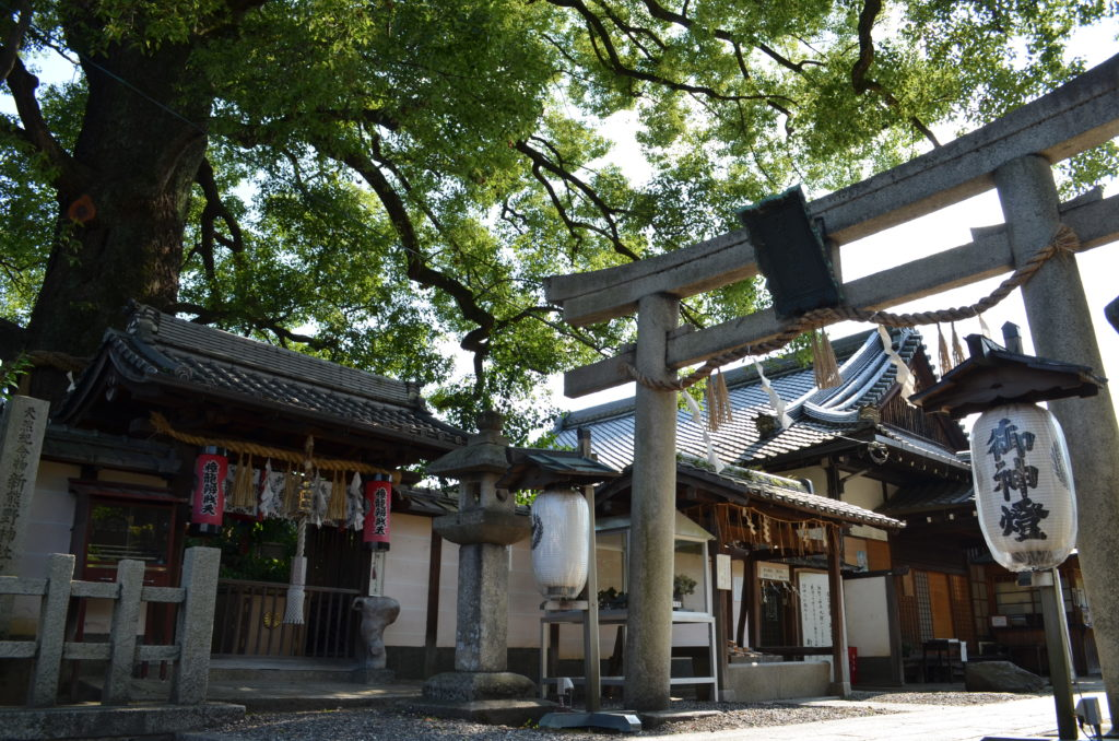 The front torii gate of Imagumano shrine in the shade of an enormous tree