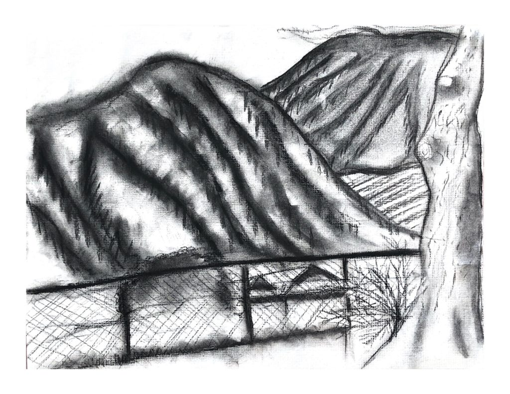 A charcoal sketch of rolling hills with a chain-link fence and a tree in the foreground